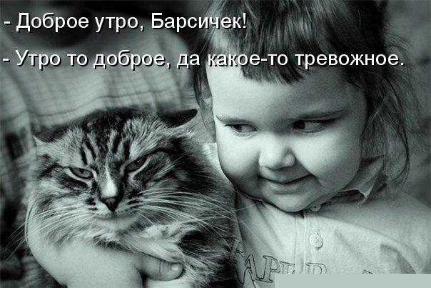 http://humourism.do.am/_ph/1/257433748.jpg